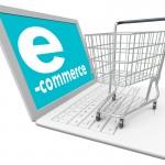 11-E-Ticaret E-Eğitimi