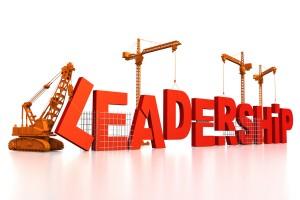 Yönetim ve Liderlik e-Eğitimi