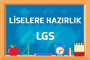 LGS Hazırlık Sınav Danışmanlığı